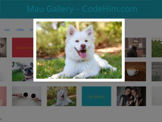 jQuery Portfolio Gallery with Categories Filter